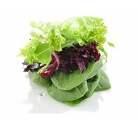 Fresh Salad | Business Catering in Surrey